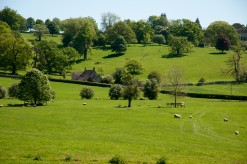 The Rolling Cotswolds